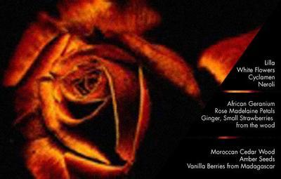 Náplň do difuzéru ZONA 250 ml - Rose Madelaine, Millefiori - 2