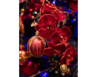 Květina ORCHIDEJ, 67 cm, červená, Kaemingk - 2