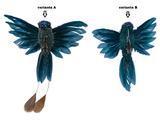 Kolibřík na klipu, 2 druhy, modrý, Kaemingk - 2/2