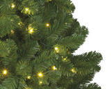 Vánoční stromeček IMPERIAL, svítící, 300cm - 740xLED, Kaemingk - 2/2