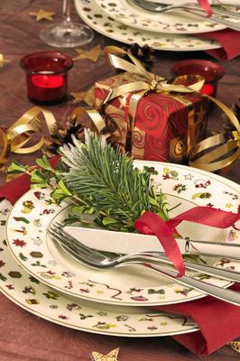 Vánoční talíř polévkový NOEL 22 cm, Taitu - 2