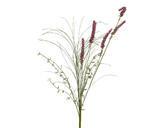 Hyacinth, 60cm, 2 druhy, Kaemingk - 4/4